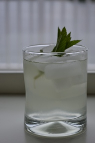 Kiwi and Mint Infused Water